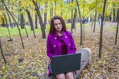 有一台膝上型计算机的逗人喜爱的妇女在秋天公园 企业夫人膝上型计算机工作 妇女检查邮件 免版税库存照片
