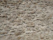 有一块石头的坚实墙壁在一个夏日 免版税库存图片