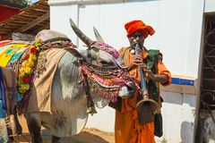 有一头训练的公牛的音乐家在市场上 免版税库存照片
