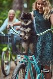有一头金发的母亲的画象和女儿在自行车乘坐与他们逗人喜爱的小的波美丝毛狗狗在公园 免版税库存图片