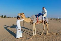 有一头骆驼的阿拉伯人在农场 免版税库存照片