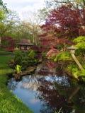 有一座红色桥梁的日本庭院,海牙,荷兰 库存照片