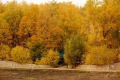 有一座蓝色桥梁的秋天公园在距离 免版税图库摄影