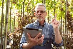 有一张剪贴板的网络商店经理在温室的背景的手上 免版税库存照片