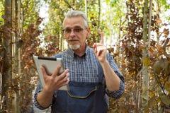 有一张剪贴板的网络商店经理在温室的背景的手上 库存照片