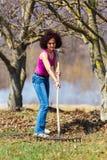 有一把犁耙的少妇在果树园 免版税库存照片