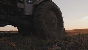 有一把耙的老灰色拖拉机在一个领域的工作在日落 股票视频