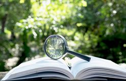 有一本书的放大镜在木在自然背景骗局 库存图片