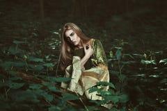 有一本书的神仙的妇女在森林 库存照片