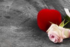 有一朵圆环和桃红色玫瑰的箱子在黑暗的背景 复制空间 免版税库存照片