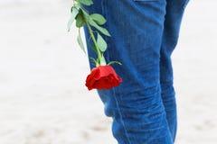 有一朵玫瑰的人在他的后面等待的爱后 在海滩的浪漫日期 库存照片