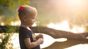 有一朵花的小女孩在自然 股票视频