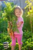 有一束的一个女孩红萝卜 免版税库存图片