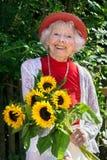 有一束的友好的资深夫人向日葵 库存图片