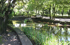 有一条人行道的公园在一条慢河旁边 免版税图库摄影
