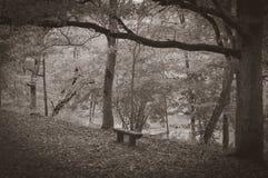 有一条偏僻的长凳和空的路的秋天公园 库存照片