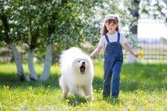 有一条大,恼怒,积极的狗的一个小女孩 图库摄影