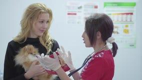 有一条小狗的画象美女在她的胳膊和一位兽医有一个听诊器的在一个兽医诊所 影视素材
