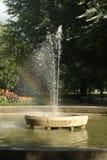 有一条彩虹的喷泉在森林 免版税库存图片