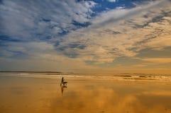 有一条狗的一个人在偏僻的海洋 库存照片