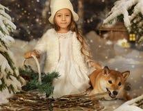 有一条狗的一个小女孩在冬天背景 免版税库存照片