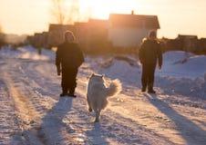 有一条狗的一个男孩在日落的光芒在雪的 免版税库存照片