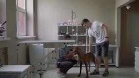 有一条狗的人在一个兽医诊所的一个招待会 股票录像