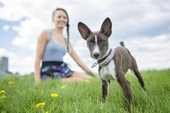 有一条狗的女孩在公园 免版税库存照片