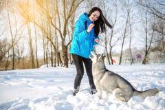 有一条狗的女孩在冬天爱斯基摩 免版税图库摄影