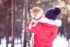有一条狗的女孩在她的胳膊 友谊的概念在a之间的 库存图片