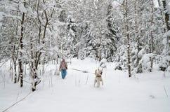 有一条狗的妇女在步行 免版税库存图片
