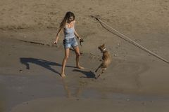 有一条狗的妇女在锡切斯沙滩  库存图片