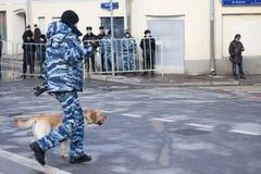 有一条狗的警察在反对行动 库存图片