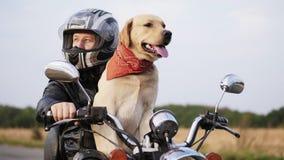 有一条狗的骑自行车的人在摩托车 影视素材