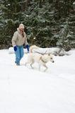 有一条白色狗的妇女在步行在期间的森林降雪 图库摄影