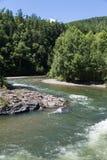 有一条粗砺的小河的河 免版税图库摄影