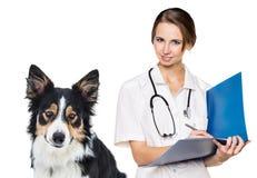 有一条美丽的狗的女性狩医 免版税库存照片