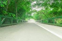 有一条道路的桥梁自行车的和人们在公园走 免版税库存图片