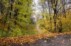 有一条道路的秋天公园向房子 落为的秋叶 免版税库存照片
