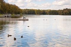 有一条长凳的湖在码头 库存照片