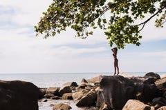有一根性感的身体和湿头发的性感的女孩 黑泳装的迷人的妇女在海滩的一个岩石附近 式样摆在  库存图片