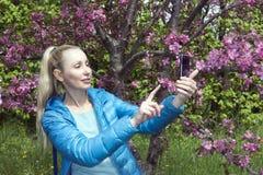 有一根长的公平的头发的年轻美丽的妇女在开花的苹果树附近拍在手机的照片 免版税库存图片