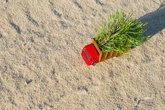有一棵圣诞树的一辆小玩具卡车在国家森林公路 免版税库存照片