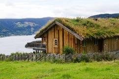 有一棵草的议院在有阴暗天空的一个屋顶 免版税库存图片