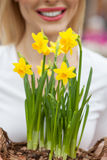 有一棵黄色水仙的快乐的女性花匠 库存图片