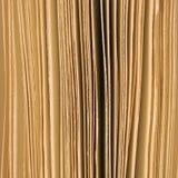 有一点打开书页背景乌贼属,大垂直的宏观特写镜头演播室射击 免版税库存照片