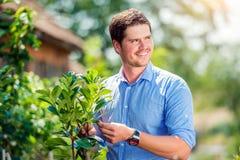 有一点树的英俊的花匠,绿色晴朗的自然 免版税图库摄影