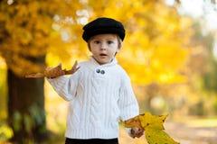 有一片大叶子的小男孩在公园 免版税图库摄影