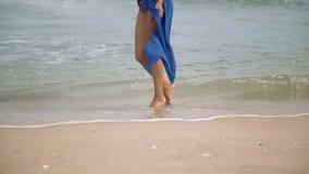 有一美好图摆在的华美的沿海滨的女孩和步行 影视素材
