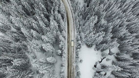 有一辆汽车的雪道在森林里 免版税库存照片